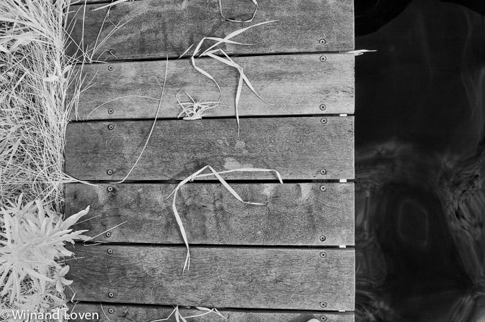 Gras, water en hout op een zwart wit infraroodfoto
