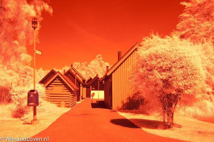 Foto met Hoya R72 infrarood filter - direct uit camera