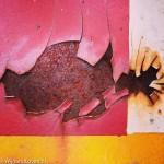 Instagram image of fish shaped rust of @wijnandloven