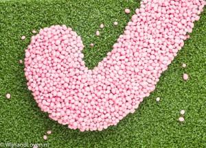 hockeystick met roze muisjes voor meisje