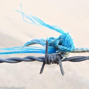 Foto van een Detail: prikkeldraad met een stuk draad van een visnet.